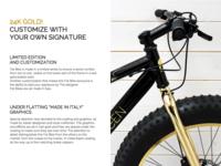 Fat Bike description detail product bike gold