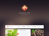 Preview flattastic free
