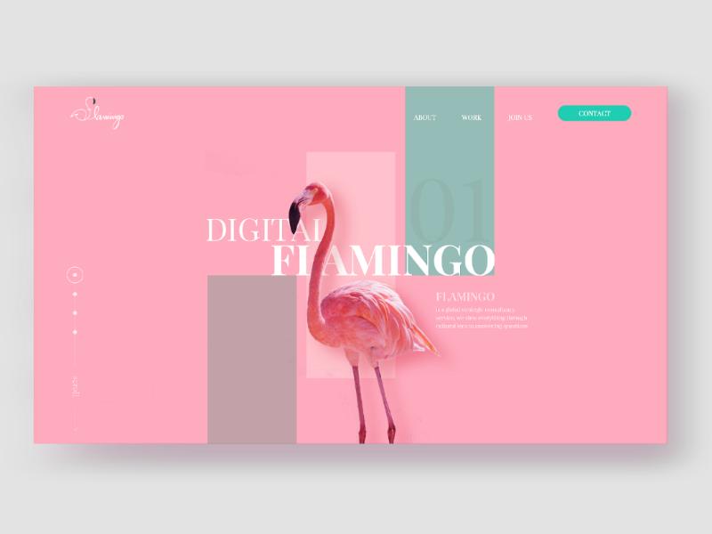 web design logo design website illustration branding