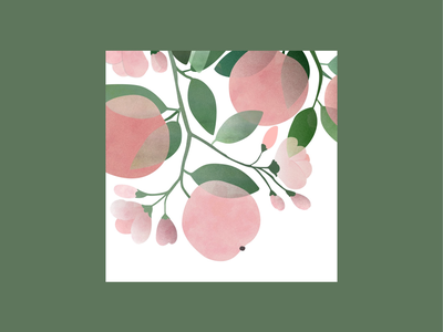 Peaches and flowers poster nature nature illustration minimalist design icon gradient color design minimalism minimal flat design vector pastel gradient colorful illustrator textured texture illustration