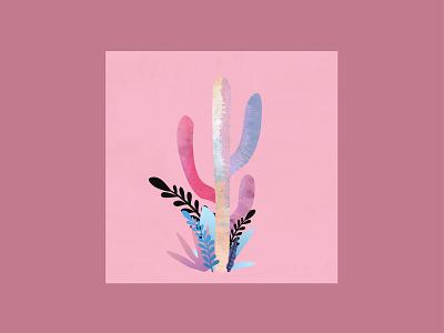 Cactus plant square pink cactus adobe illustrator texture poster nature illustration nature minimalist design gradient color gradient flat illustration illustraor design vector pastel minimalism minimal
