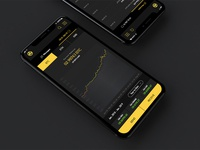 Cryptocurrency wallet mockup