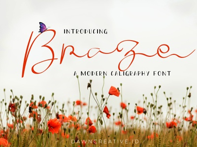 Braze - a Modern Calligraphy font illustration branding fontself script font display font font calligraphy font handwritten font typography