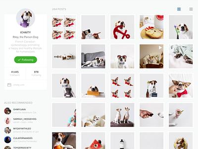 Instagram Redesign flat ui ux interface web instagram redesign website clean yosemite
