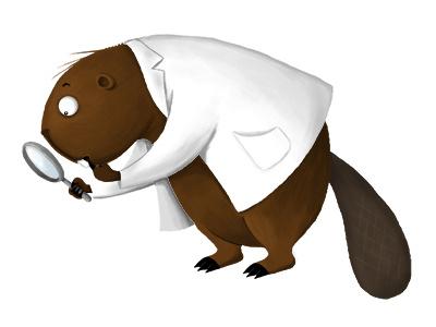 Doctor Beaver beaver animal funny illustration childrens book