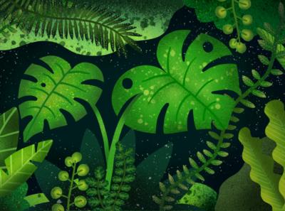 Jungle leaf painting green design procreate plants drawing illustration jungle