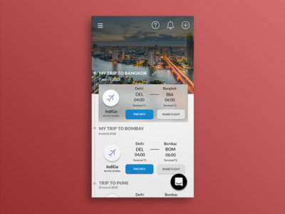 Home Screen-Airport Assistant App