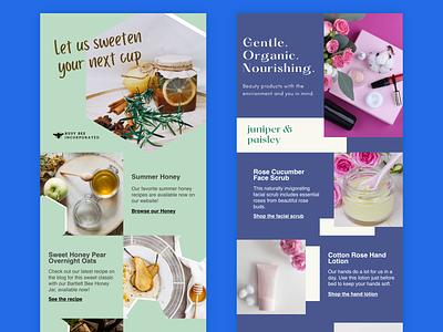 Border & Trini Email Templates ui design email template design product design ui email