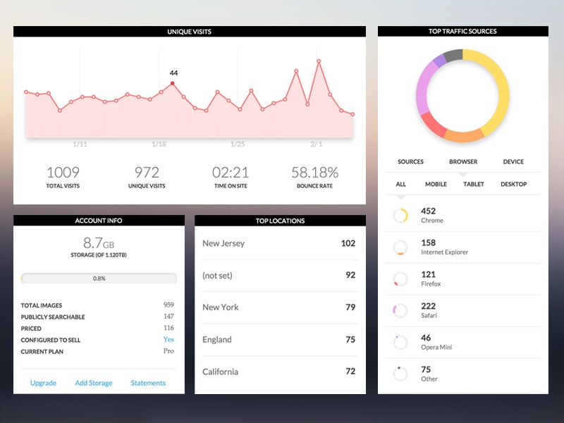 Information Dashboard ui web design photoshelter dashboard metrics