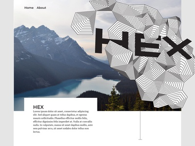 Hex Home logotype website ux abstract ui web type look and feel logo geometric branding texture brand typography illustration minimal flat vector graphic design