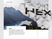 Hex Home