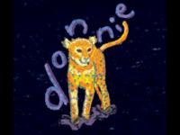 Donnie the cheetah from the Cincinnati zoo