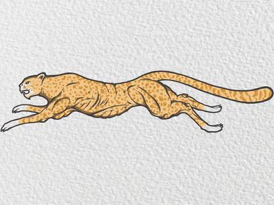 Cheetah Muscles