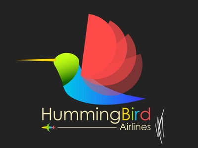 Daily Logo Challenge - Day 12 - Airline vector hummingbird dailylogo dailylogochallenge airline logodesign logo