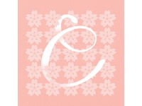 C is for Cherry Blossom ~ A–Z of Japan