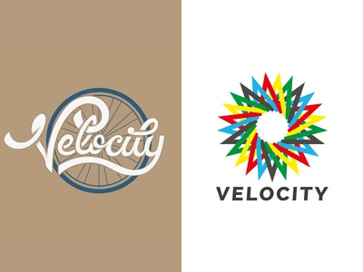 Velocity: Two Concepts