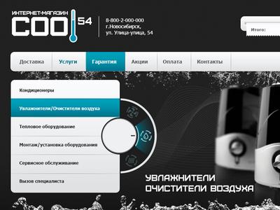 """""""Cool 54"""" Website"""