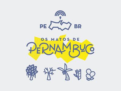 Pe Icons 02 charachters ui logo branding icon pernambuco brazil mikoko drawing vector illustration