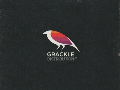 Grackle Distribution