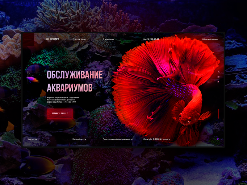 Services of ichthyologists design concept uidesign interface design ui elements landing page design web webdesign ui  ux web design ui