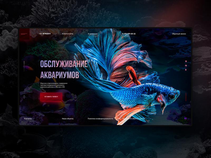 ichthyologists design concept ver. 2 uidesign interface design ui elements landing page design web webdesign ui  ux web design ui