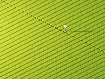 Socially Distant social distancing isolation lonely alone harvest rows field farming scarecrow lowpoly isometric modeling illustration blender