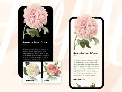 Floral app concept minimalist light app ios flower dark helsinki ui