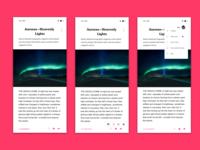 Articles concept app - Light version