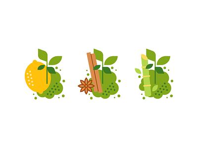 Matcha drink flavors leaf drinks tea drink cardom cinnamon sugar cane cane sugar lime lemon matcha design illustration vector minimal icons minimalism minimalist icon