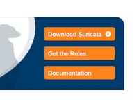 Suricata Web Buttons