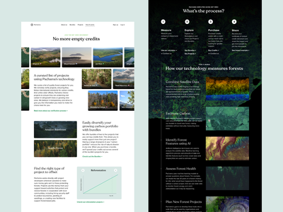 Pachama - How it works Landing Page carbon co2 climate pachamama carbon credits typography landing design ux ui flat