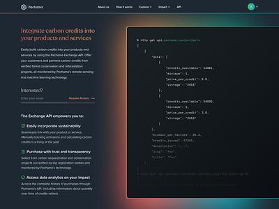 API Teaser carbon navigation recoleta black terminal api typography vector design landing ux ui flat