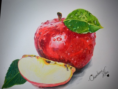 Drawing Apple art apple hand drawing drawing chandrani das