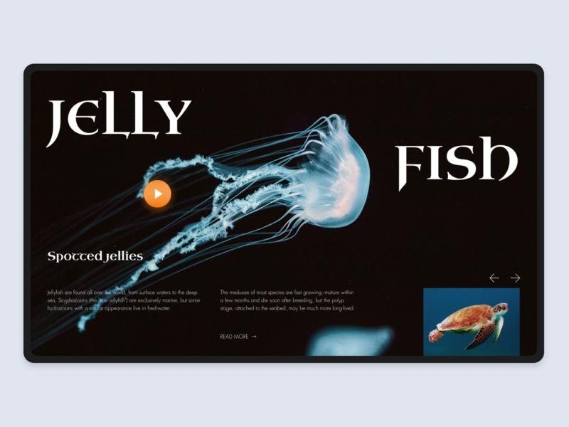 Underwater World Encyclopedia designline ocean jellyfish grid website typography minimal design web ux ui