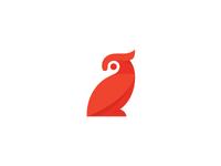 Mistery bird :)