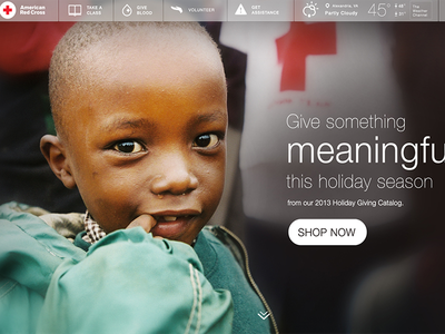 Give Something Meaningful wdg web development group design development interactive american red cross health