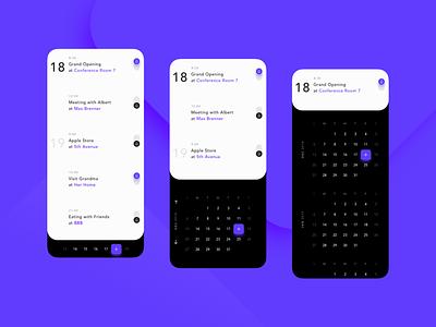 Calendar Concept app ux ui design