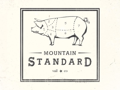 Mountain Standard Logo and Font