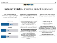 Minority Owned Businesses Data