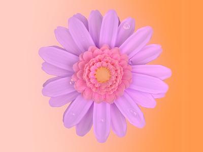 Daisy flower study corona render cinema4d 3d c4d