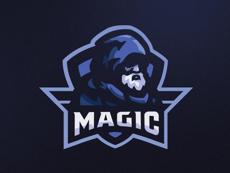 Wizard wizards wizard logo design vector esportslogo mascot logo mascot illustration gamer esports esportlogo esport branding