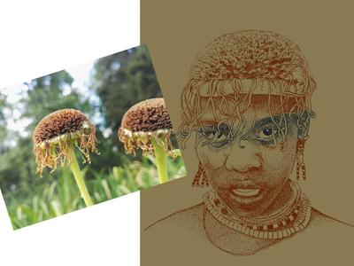 kukka ja piirros