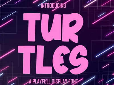 TURTLES a Playfull Display fonts font calligraphy lettering playfull best seller natural handwritten script corporate