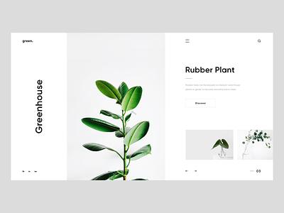 Greenhouse xd design uidesign greenhouse plant unsplash clean inspiration landing page concept web design ux ui