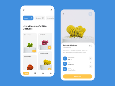 Cacto design clean inspiration concept application decoration cactus plant app design app mobile ux ui