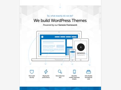 We build WordPress Themes