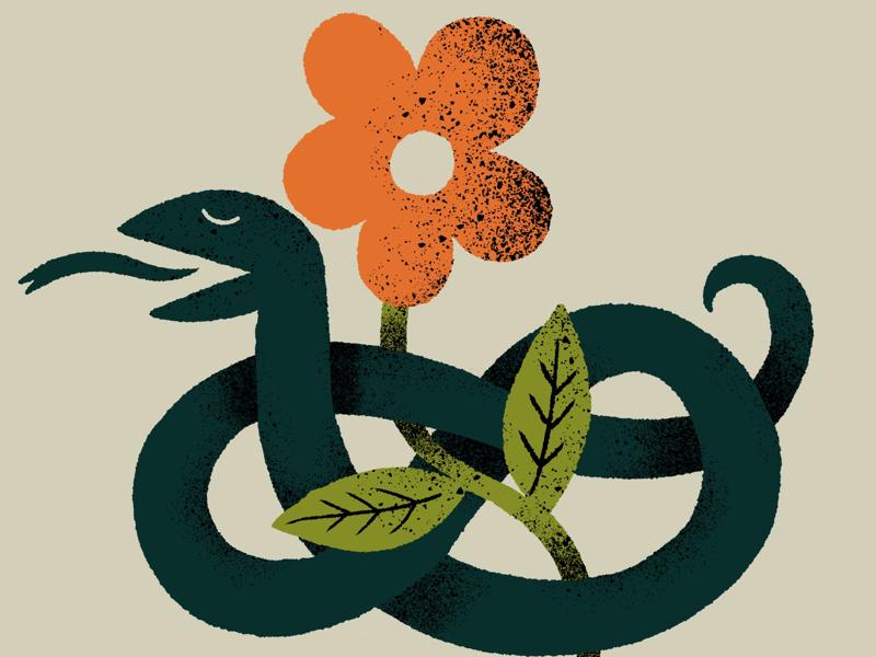 Snake & flower illustration flower snake