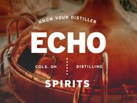 Nf dribbble echo spirits identity