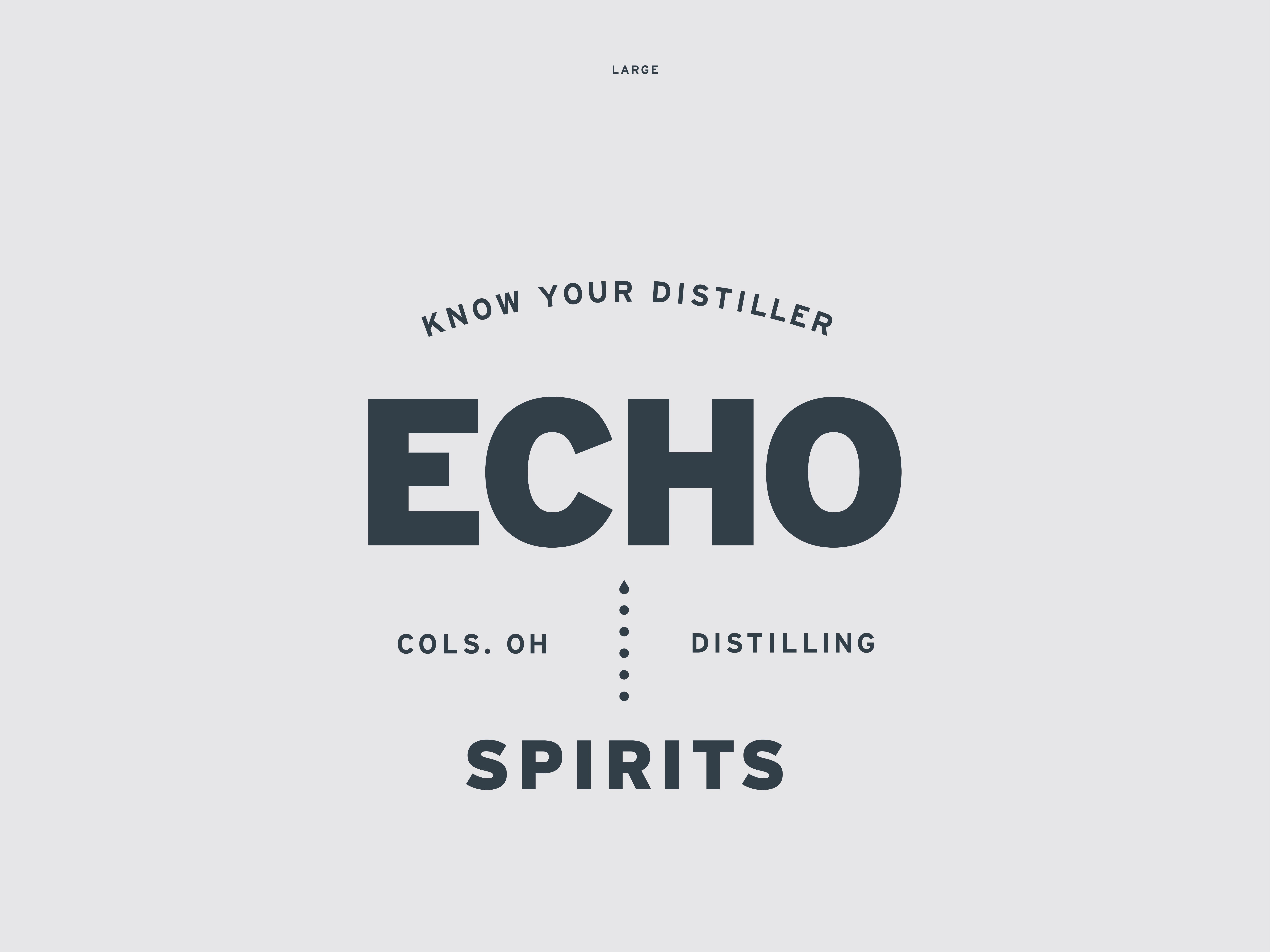 Nf dribbble echo spirits identity14