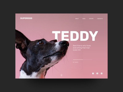 Dog shelter promo #2 main page dog promo pink typography web figma ui design